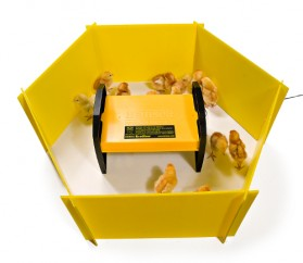 Brinsea - chick enclosure panels (8 panels)