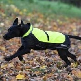 WOOFMASTA DOG COAT HI-VIZ FLASHING FLUORESCENT YELLOW