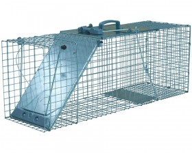 Easy Set Large 1-Door Animal Trap
