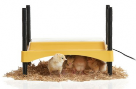 Brinsea Eco Glow 600 Chick Brooder