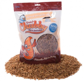 Chubby Mealworms - 500gr
